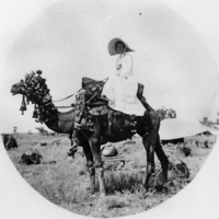 1880: Unidentified woman on a camel