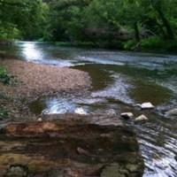 Cypress Creek.jpg