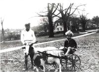 Goat Cart_Pebble Hill.jpg
